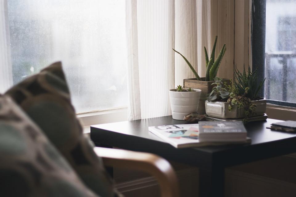 Giungla urbana: Piante in camera da letto